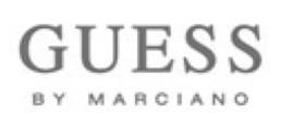 logo_guess